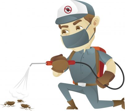 Reliable Pest Control for Pest Control in Phoenix, AZ